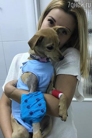 Ольга Орлова с любимой собакой