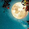 Лунный календарь на неделю с 6 по 12 июля