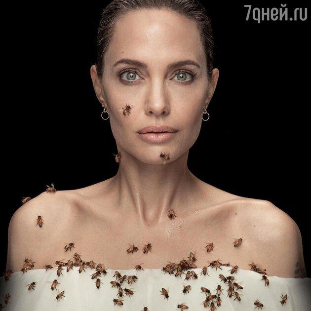 Анджелина Джоли — фото